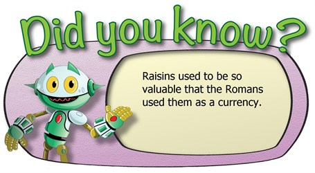 Did you know_raisins were used as a currency
