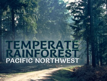 ARKive Temperate Rainforest educational resources
