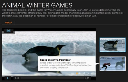 aa animal winter games