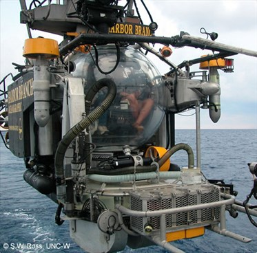 Johnston Sea Link Manned Submersible