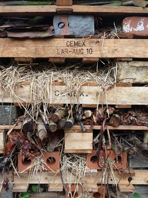 Bug hotel (c) London Permaculture