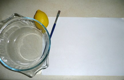 invisible ink science project Teach your about chemical compounds with this printable science activity write messages using various liquids and lightly burn the messages to reveal the text.