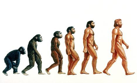 Early Humans Evolution How did we become human