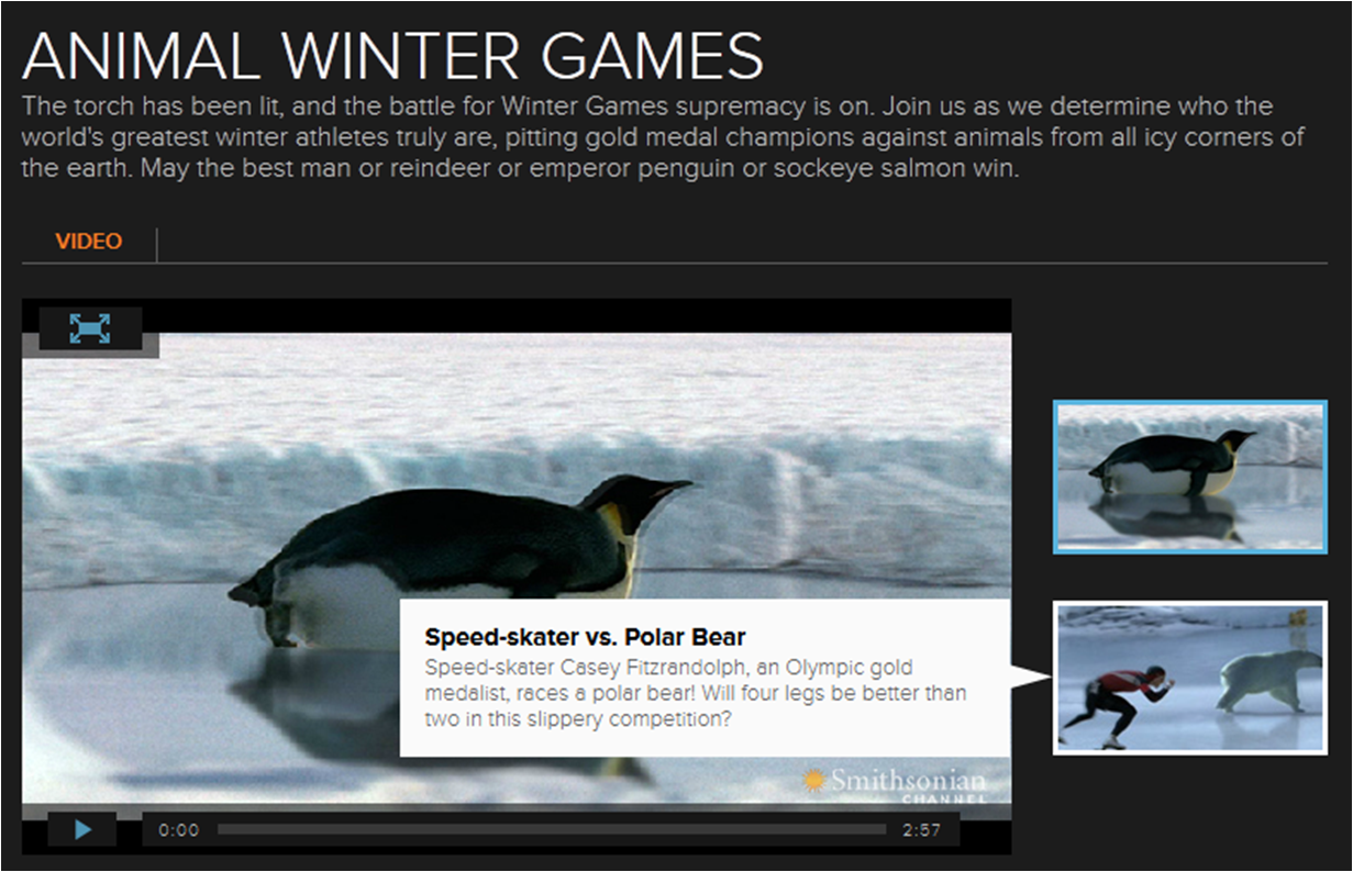 Winter animal games and videos